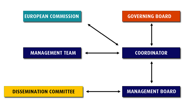 Management structure image